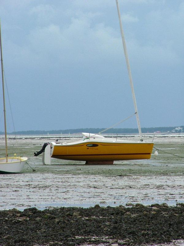 voilier ocqueteau tilapia le catboat facile